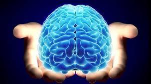 meditación observar la mente